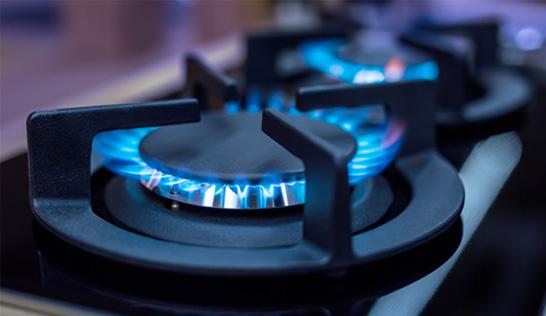 propane gas cook range